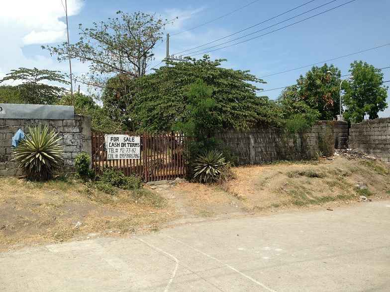 Vacant Lot in Almanza Las Pinas City For Sale - 496 Sqm