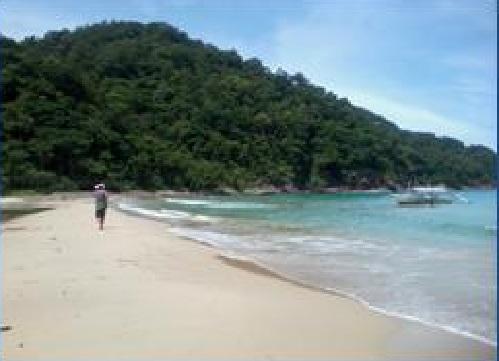 Beach Lot in Danlig Beach San Vicente, Palawan For Sale - 199 Hectare