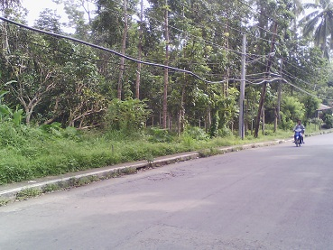 Vacant Lot in Palanca San Jose, Batangas For Sale - 3333 Sqm