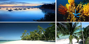 Beach Lot in Dao Panglao, Bohol For Sale - 7.6 Hectare