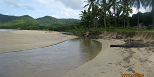 Beach Lot in Kemdeng San Vicente, Palawan For Sale - 1.9 Hectare