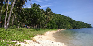 Beach Lot in Poblacion San Vicente, Palawan For Sale - 3.1 Hectare