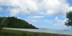 Beach Lot in New Canipo San Vicente, Palawan For Sale - 13.2 Hectare
