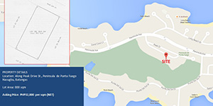 Vacant Lot in  Nasugbu, Batangas For Sale - 800 Sqm
