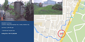 Vacant Lot in Tondo Manila City For Sale - 1359 Sqm