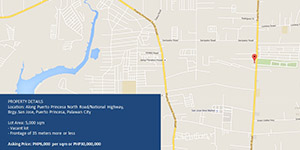 Vacant Lot in San Jose Puerto Princesan City, Palawan For Sale - 5000 Sqm
