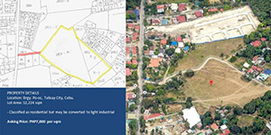 Vacant Lot in Po-oc Talisay City, Cebu For Sale - 1.2 Hectare