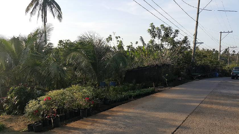 Vacant Lot in City Land Dev. Corp.    Tanza, Cavite For Sale - 935 Sqm