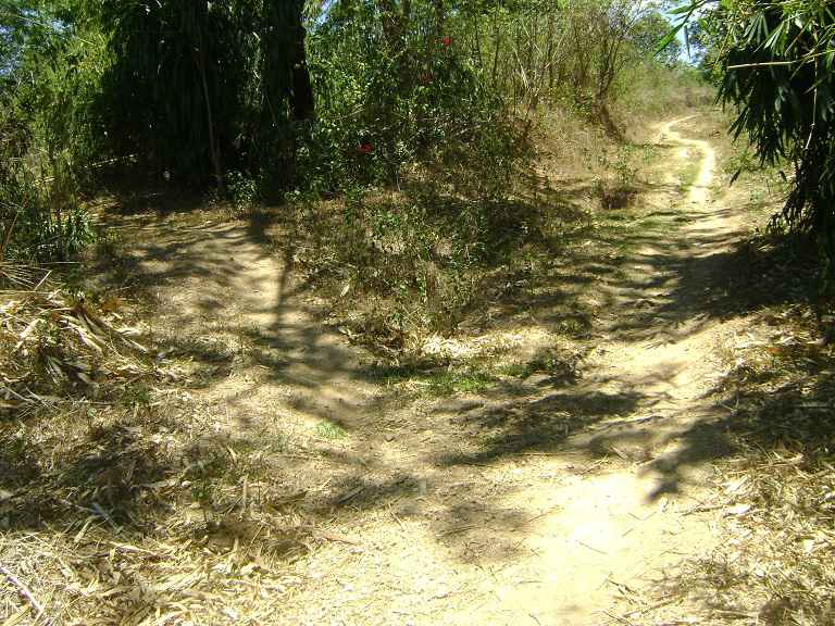 Vacant Lot in Brgy. Pantay Dalig  Teresa, Rizal For Sale - 2.3 Hectare
