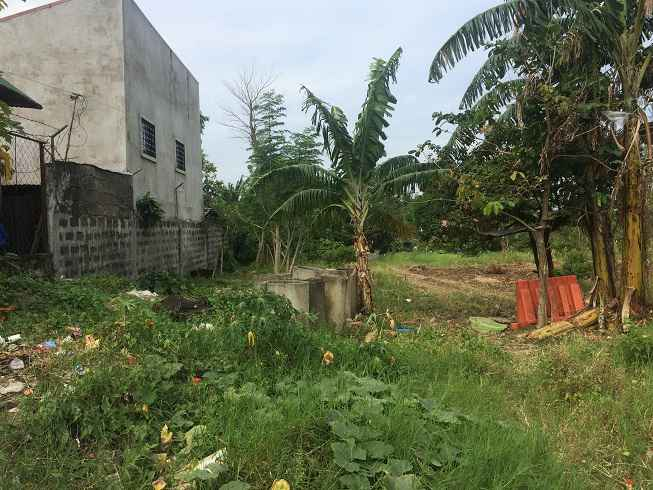 Agricultural Lot in Sto Tomas, Batangas for Sale